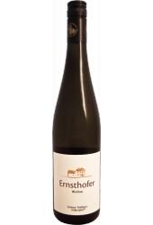 Grüner Veltliner Federspiel 2013 Weingut Ernsthofer