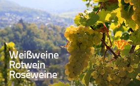 Weißweine, Rotweine, Roséweine
